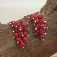 Red coral cluster ear-rings.